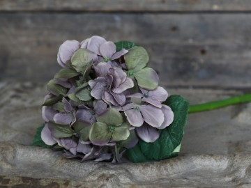 "Chic Antique ""Hortensia"" Lyng"