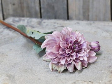 "Chic Antique ""Dahlia"" Lyng"